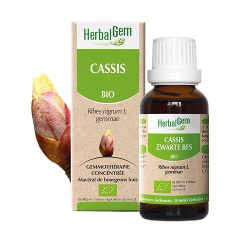 CASSIS BROTS macerat Herbalgem BIO 30 ML