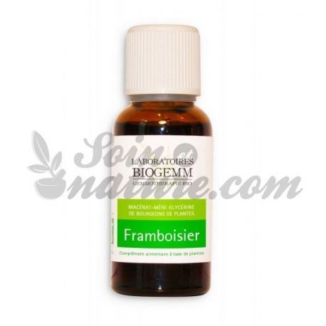 MACERATED BUD FRAMBOISIER BIO 30ML gemmotherapy BIOGEMM