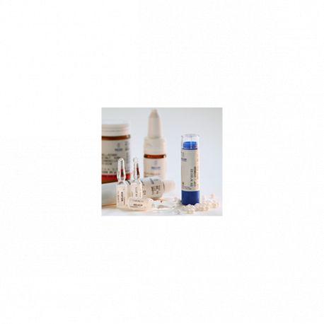 Gránulos Tubo 30X 15X Ferrum metallicum 10X homéopathie Weleda