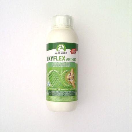 AUDEVARD EKYFLEX ARTHRO ORAL ampolla de solució 1 L