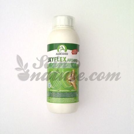 AUDEVARD EKYFLEX ARTHRO ORAL botella de solución 1 L
