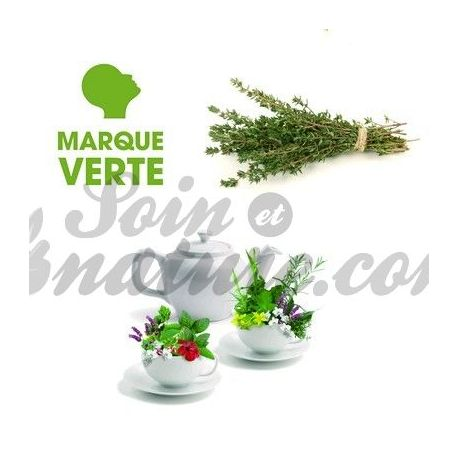 THYME TEA BAG filtro verde BT25 BRAND