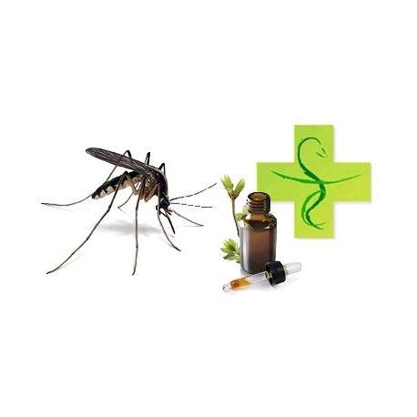 Preparação óleos essenciais contra mosquitos