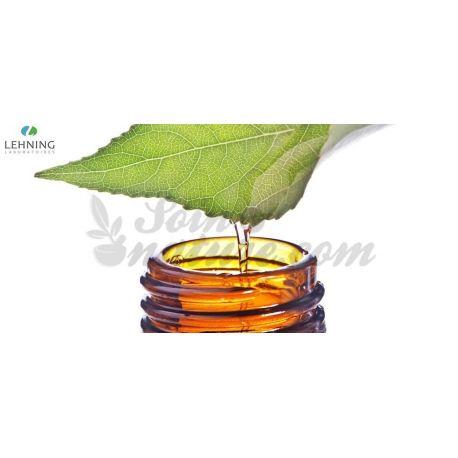 Jaborandi tincture Homeopathic Drops LEHNING