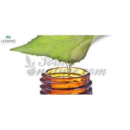 Eufrasia officinalis tintura homeopática Gotas LEHNING