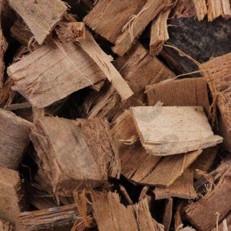 Aubier de Tilleul blanc HERBORISTERIE tilia cordata