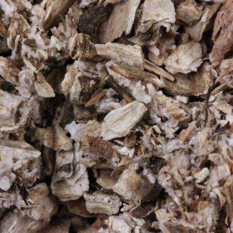 Bardana (bardana) Root herboristerie Arctium lappa