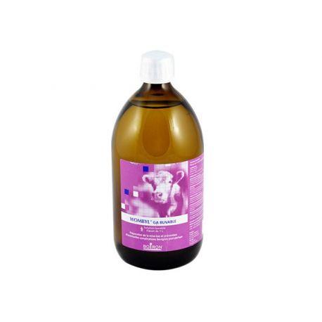 WOMBYL GA Boiron ORALE LÖSUNG Bottle 1L