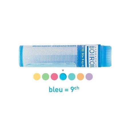 Pancreine (alvleesklier) 9CH 15CH 7CH enkele dosis Homeopathische Boiron