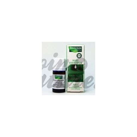 Grote engelwortel Angelica L. ESSENTIAL OIL 5ML