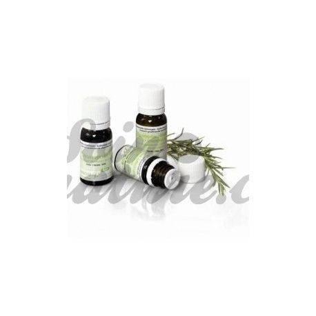Orgánica de aceite esencial de abeto negro PRANAROM 10 ml