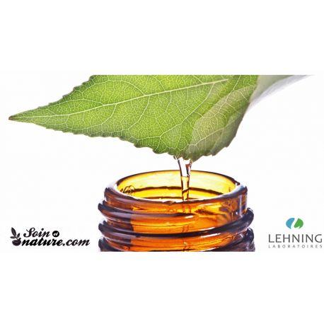 Lehning bucal Gota Aesculus CH DH diluição homeopática