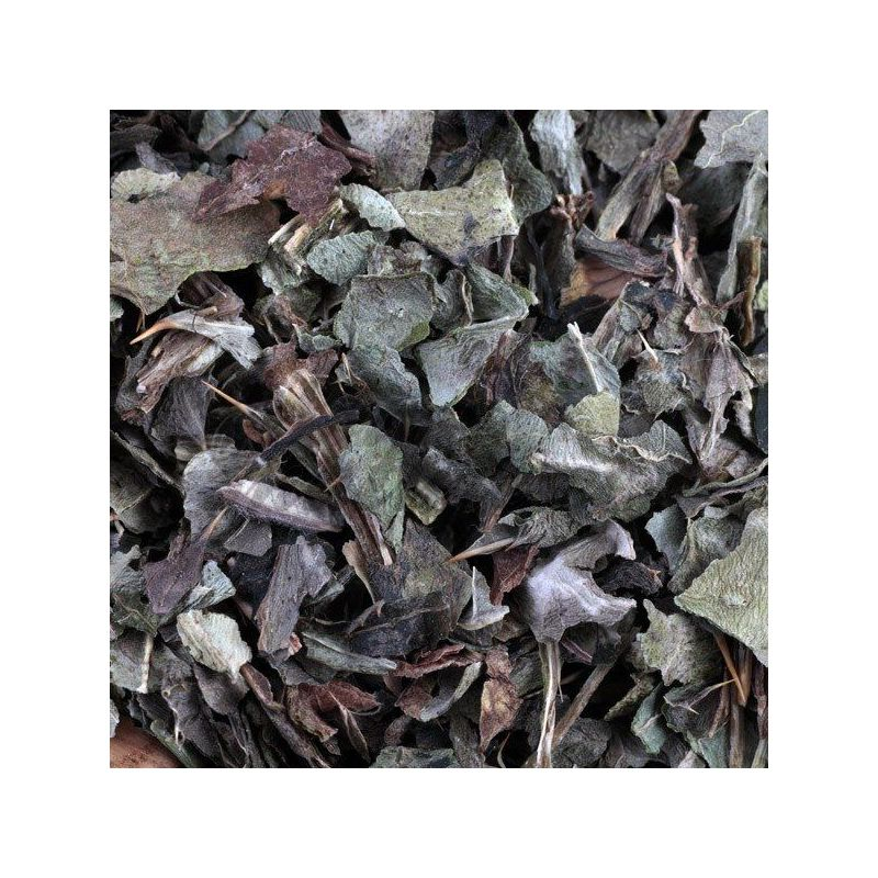 chardon marie plante coupee iphym herboristerie silybum. Black Bedroom Furniture Sets. Home Design Ideas