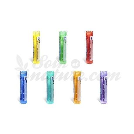 PULMINE (PULMÓN) 5CH 4CH 7 CH 9 CH 15CH 30CH gránulos Tubo homéopathie Boiron