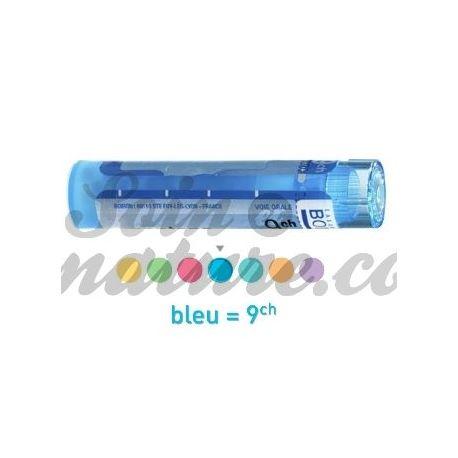YOHIMBEHE 4CH 9CH 15CH 30CH 7CH 5CH Granulaat Boiron homeopathische