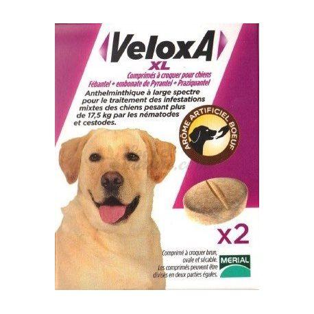 VELOXA XL vermífug GOS 2 CPR masticable Merial