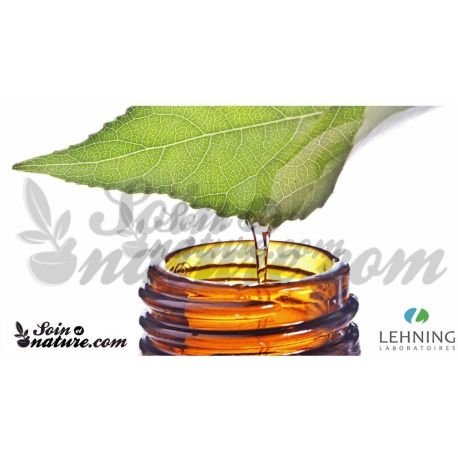 Lehning gota SAMBUCUS NIGRA CH DH dilució homeopàtica oral,