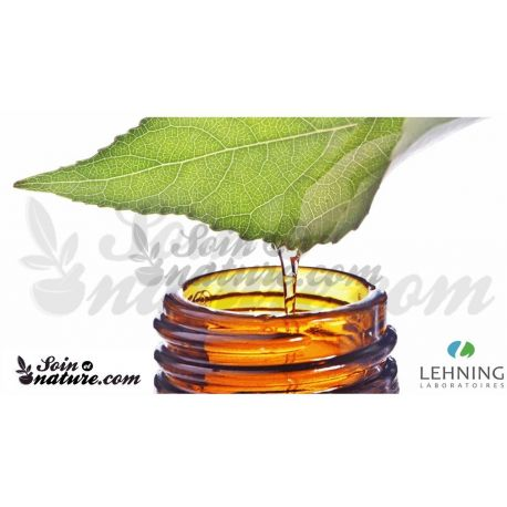 Lehning gota THUYA OCCIDENTALIS CH DH dilució homeopàtica oral,
