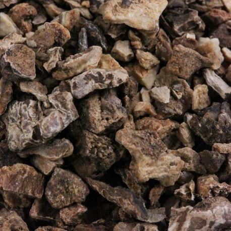 Harpagophytum - Racine reciso Confezione da 250 g