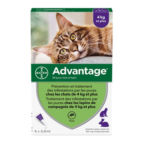 BAYER ADVANTAGE 80 RABBIT CAT 6 pipettes of 0.8 ml
