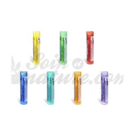 NITROSUM Amylium 5CH 4CH 9CH 15CH 7CH grànuls Tube homéopathie Boiron