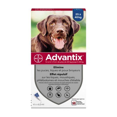 Große Hunde BAYER ADVANTIX 4 Pipetten 4ML