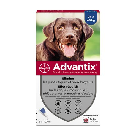BAYER ADVANTIX GRAND CHIEN 6 PIPETTES DE 4 ML