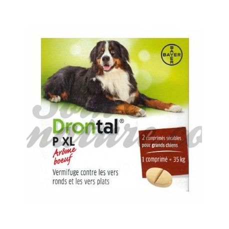 Drontal XL P 2 COMPRESSE BAYER DOG