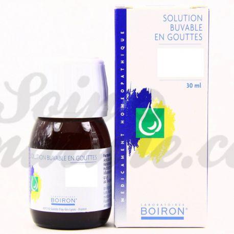 ELEUTHEROCOCCUS SENTICOSUS 1DH 4DH 6DH Teinture-mère gouttes buvables Homéopathie BOIRON
