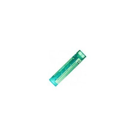Gránulos Tube Lyc 200K 1000K homéopathie Boiron