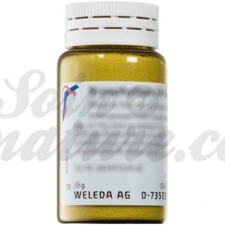 WELEDA ANTIMONIUM ARSENICOSUM D6 Trituration homéopathique Poudre orale
