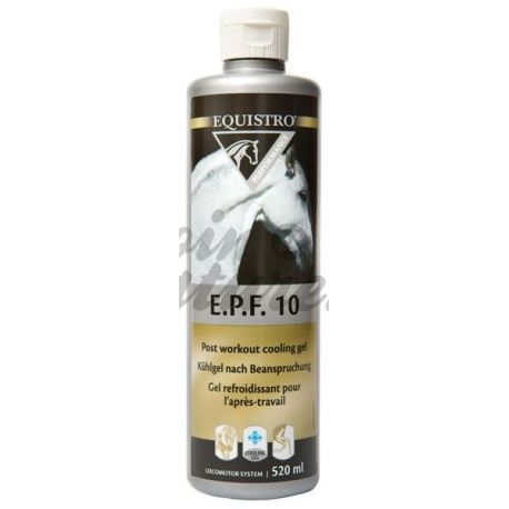 EQUISTRO EPF10 VETOQUINOL GEL MASSAGEM TUBE 540 ML