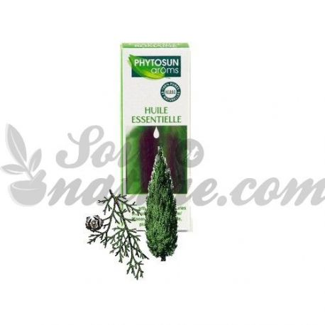 CUPRESSUS sempervirens L. sempreverde olio essenziale di cipresso