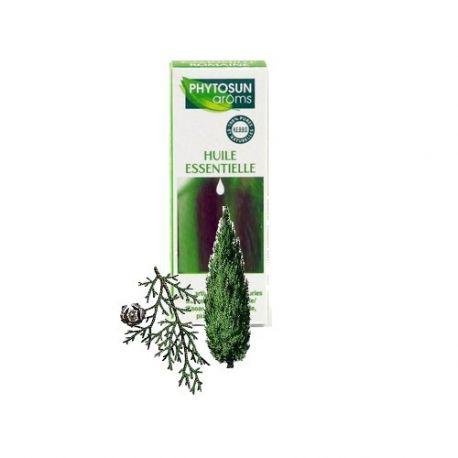 Italiaanse cipres L. essentiële olie groenblijvende cipressen
