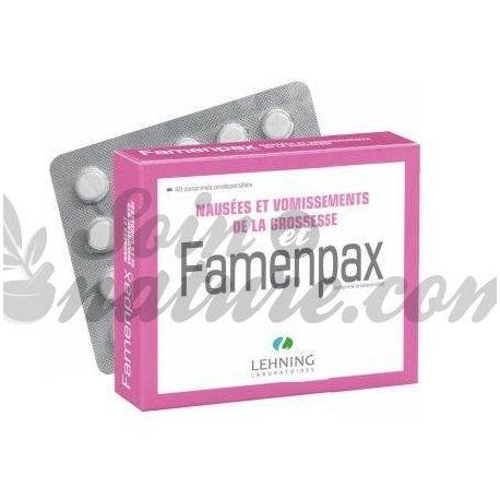 Zwangerschap Misselijkheid FAMENPAX Homeopathie LEHNING