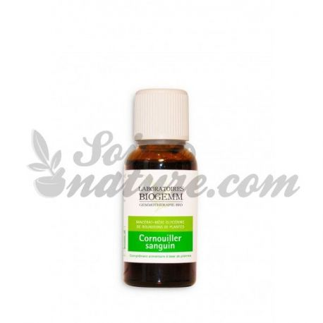 Macerato SANGUE DOGWOOD GERMOGLI BIO 30ML gemmoterapia BIOGEMM