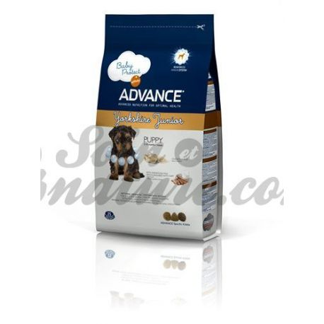 Gos de Yorkshire Terrier ADVANCE SAC JUNIOR 1,5 kg