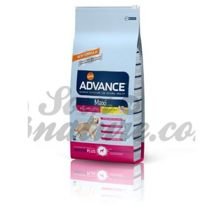 ADVANCE MAXI SENIOR DOG BOLSA 15 KG