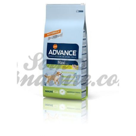 ADVANCE MAXI JUNIOR PERRO BOLSA 15 KG
