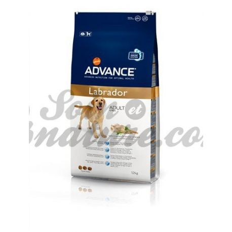 ADVANCE-Labrador-Hund BAG 12 KG