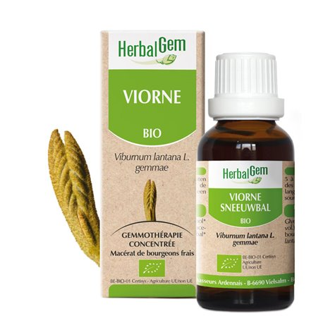 Viburnum plantones glicerina macerar BIO 30ml HERBALGEM