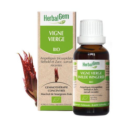 VINE VIRGIN knop glycerinemaceraat BIO 30ml Herbalgem