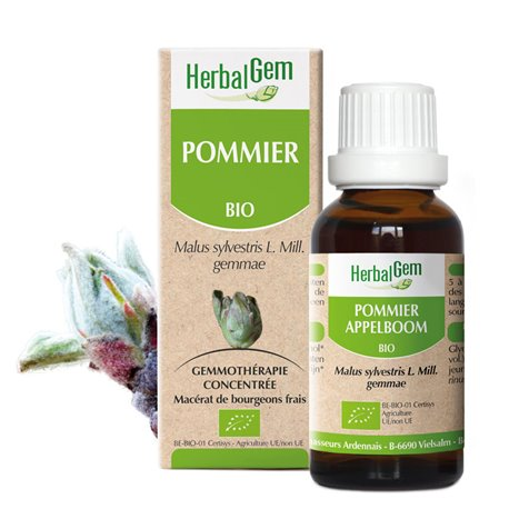 APPLE boompje glycerinemaceraat BIO 30ml Herbalgem