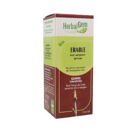 MAPLE bud glycerinemaceraat BIO 30ml Herbalgem