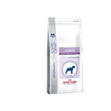 Royal Canin cane gigante JUNIOR 14 KG