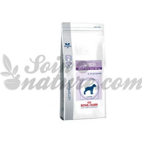 ROYAL CANIN JUNIOR GIANT DOG 14 KG