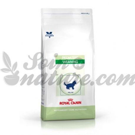 ROYAL CANIN CURES FP borsa deslletament PEDIÀTRICA Castrats Cat 2 kg