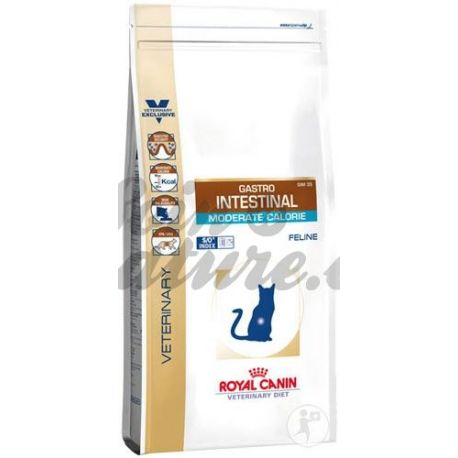 Royal Canin GASTRO INTESTINAL CAT DIETA Veterinay calòrica moderada 4 KG