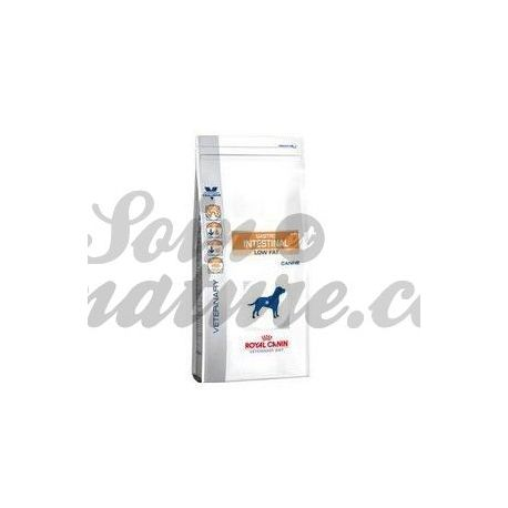 Royal Canin GASTRO INTESTINALE CANE VET DIETA JUNIOR sacchetto 2.5kg