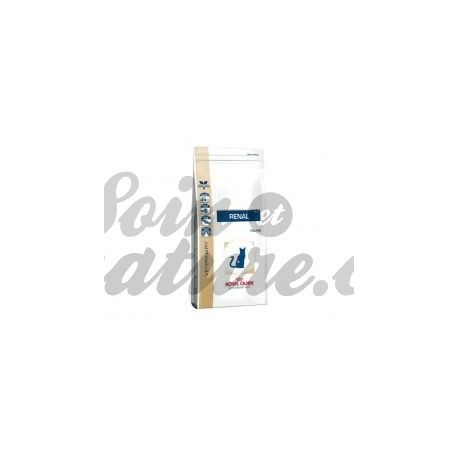 Royal Canin RENAL FP CAT borsa DIETA 500 g